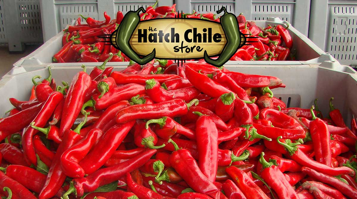 Bins of red chile