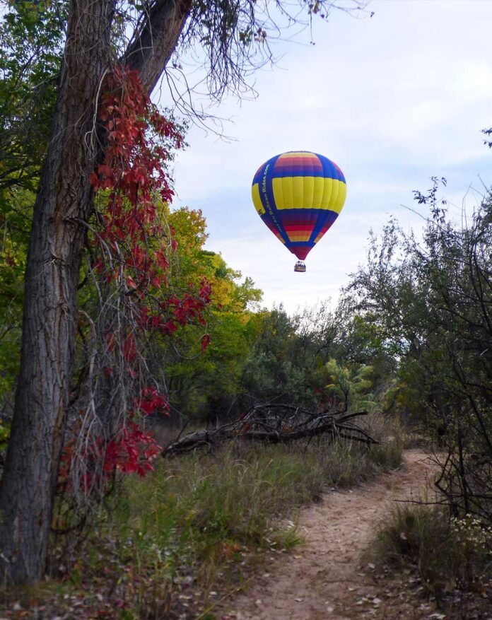 Balloon in the bosque