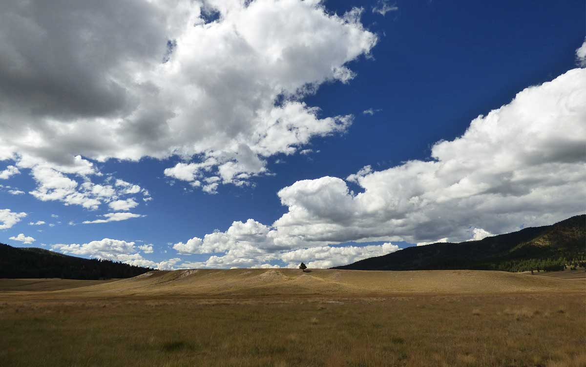 Ancient lake bed at the Valles Caldera