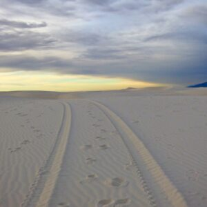 White Sands tire tracks
