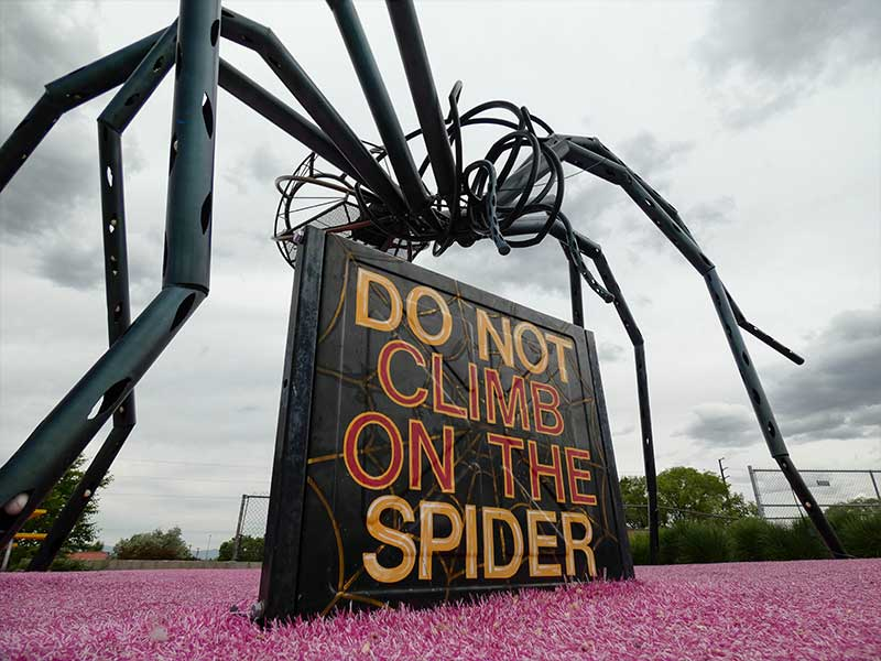 Spider outside of Meow Wolf