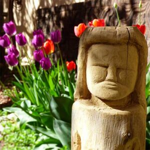 Casa Gallina gardens in Taos