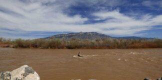 Rio Grande Corrales